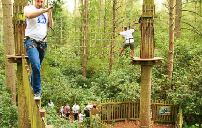 GoApe at Alice Holt Forest