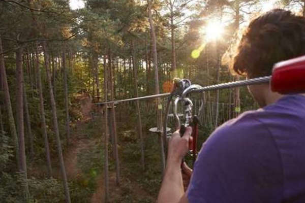 Go Ape at Alice Holt Forest